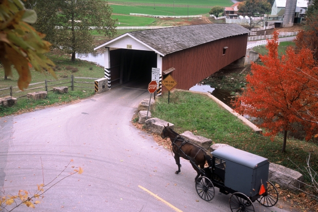 An Amish horse drawn buggy approaching a covered bridge in Lancaster, PA